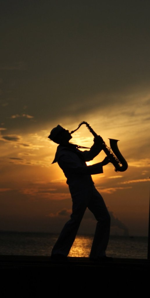 saxophone_sunset_by_elliums-d5eez8q